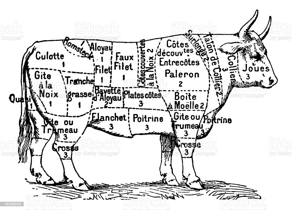 "Cuts of Beef (Isolated on White) ""Antique XIX century engraving showing different cuts of beef. Published in Specimens des divers caracteres et vignettes typographiques de la fonderie by Laurent de Berny (Paris, 1878).CLICK ON THE LINKS BELOW FOR HUNDREDS MORE SIMILAR IMAGES:"" 19th Century stock illustration"