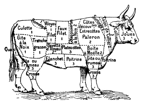 Cuts Of Beef Stock Illustration - Download Image Now