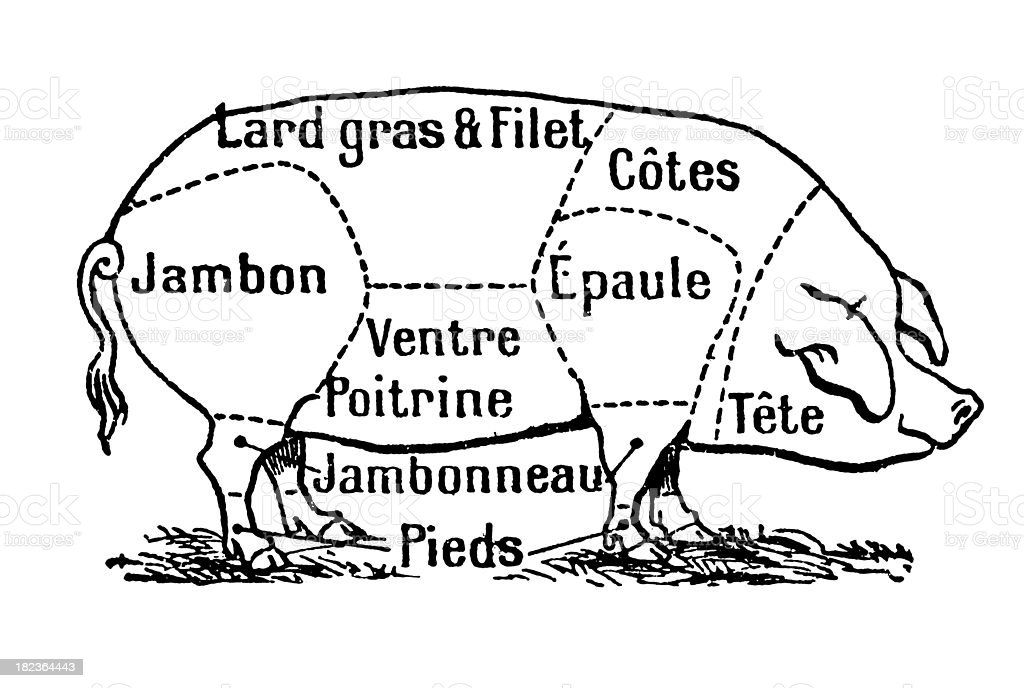 Cuts of Pork (Isolated on White) royalty-free stock vector art