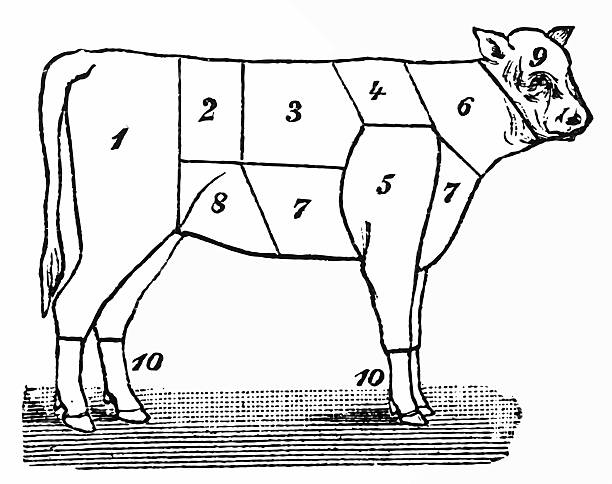 American Cuts Of Beef Vector 1450723 furthermore Home Page together with Rib Eye Steak likewise Prime Choice Select Beef What Does It likewise D 38893357 Kincaids Restaurantes Mariscos Churrasqueria. on cuts of steak quality
