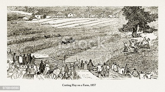 Beautifully Illustrated Antique Engraved Victorian Illustration of Portrait of Early Americans Cutting Hay on a Farm Engraving, 1857. Source: Original edition from my own archives. Copyright has expired on this artwork. Digitally restored.