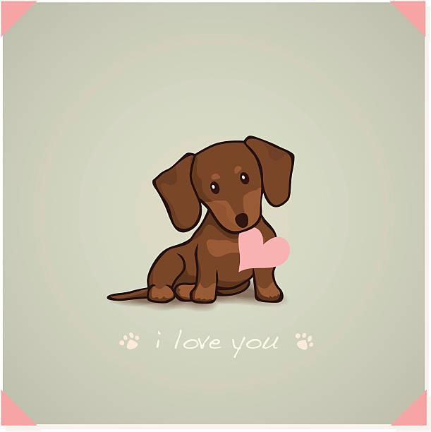 bildbanksillustrationer, clip art samt tecknat material och ikoner med dachshund puppy - tax