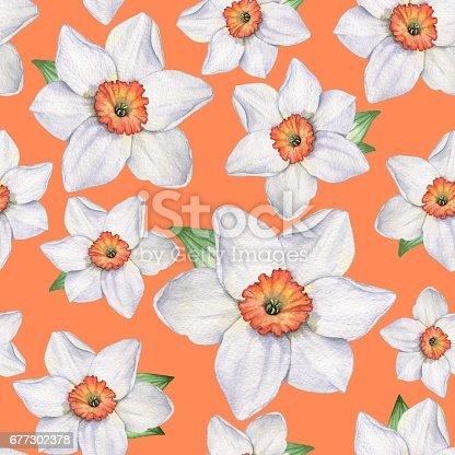 istock Daffodils - Seamless pattern 5. 677302378