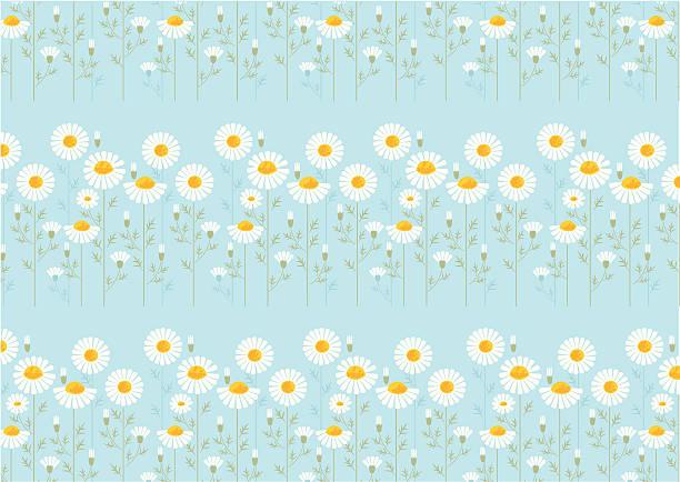 Daisy wallpaper vektorkonstillustration