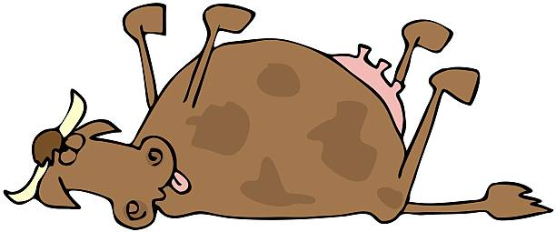 Dead Cow vector art illustration