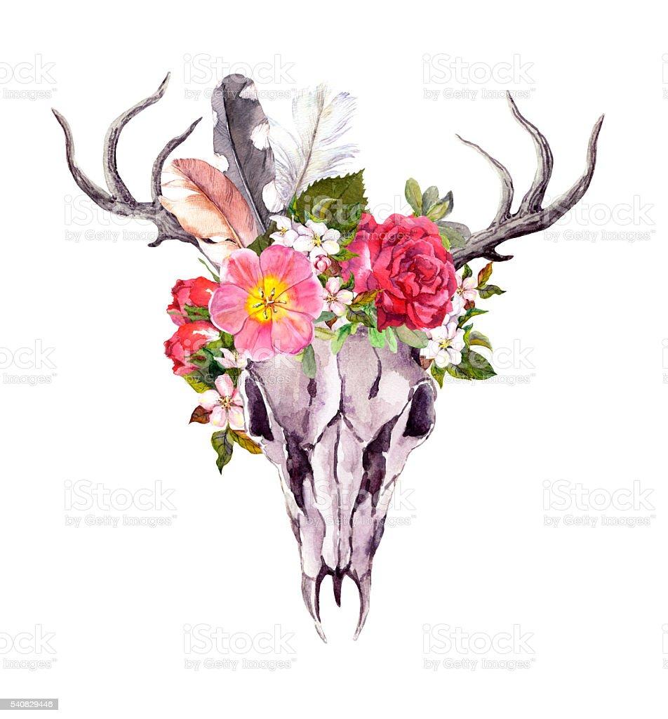 Deer animal skull - flowers, feathers. Watercolor in vintage style vector art illustration