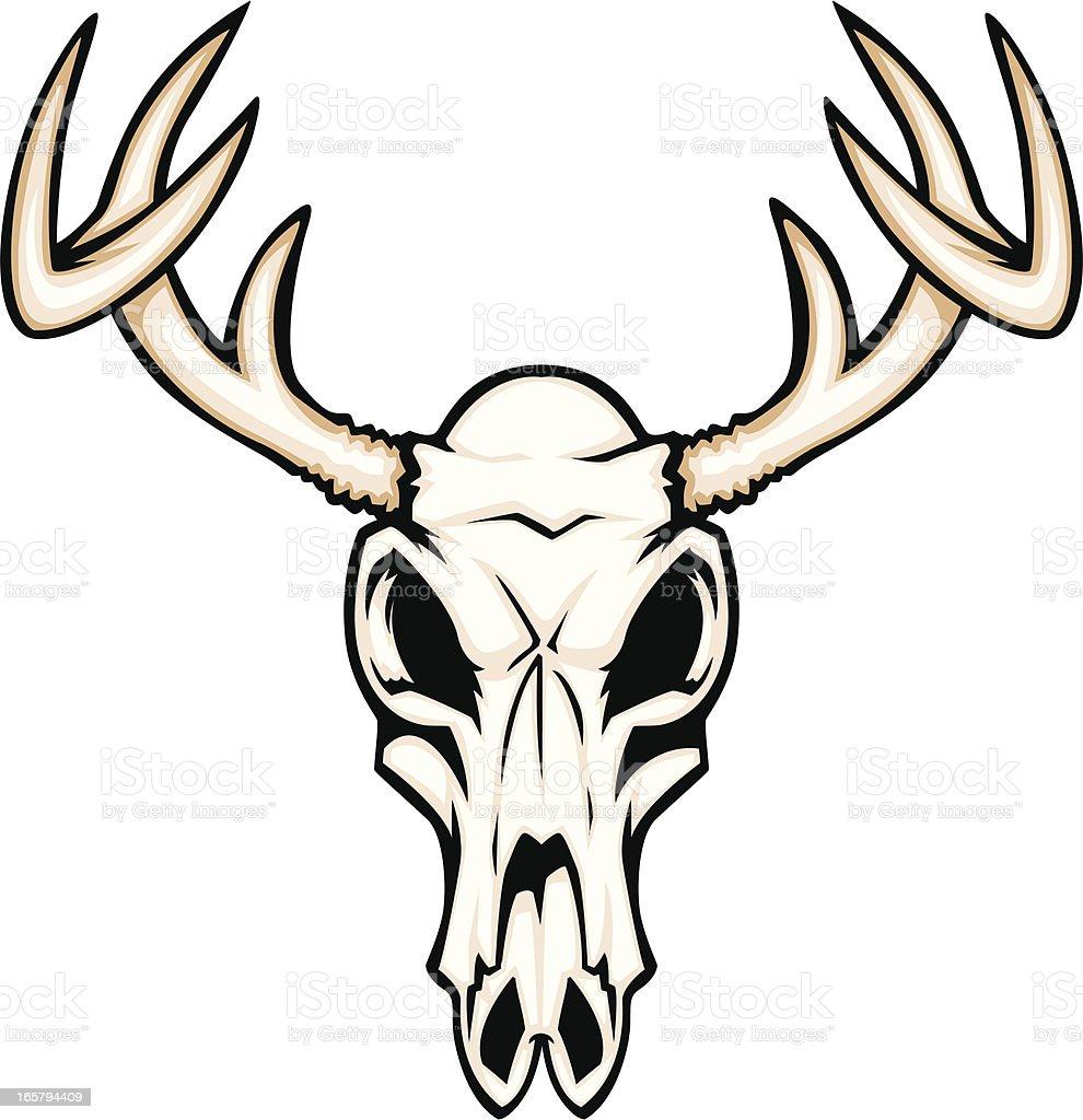 deer skull stock vector art more images of animal 165794409 istock rh istockphoto com deer skull vector art deer skull silhouette vector
