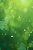 defocused green background