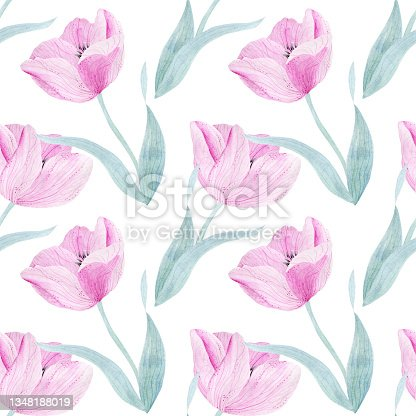 istock Delicate pink tulip.  Watercolor illustration for congratulations, invitations, perfumery products. Seamless pattern. 1348188019