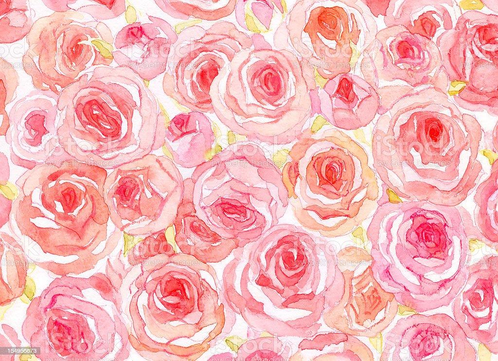 Delicate watercolor roses vector art illustration