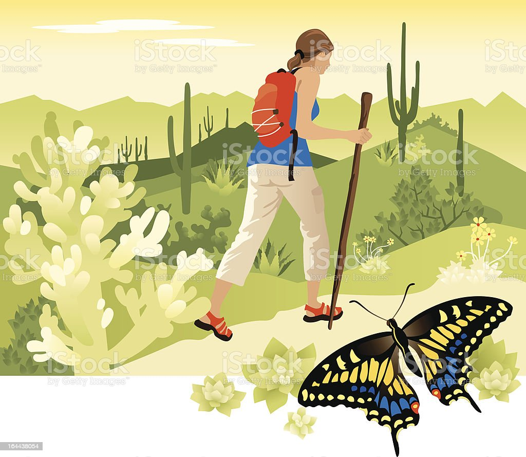 Desert Hiking vector art illustration