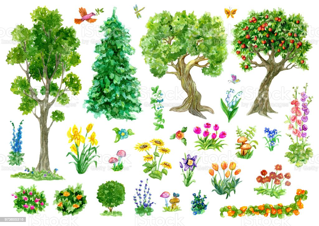 Superbe Design Set With Trees Nature And Garden Items Flowers ...