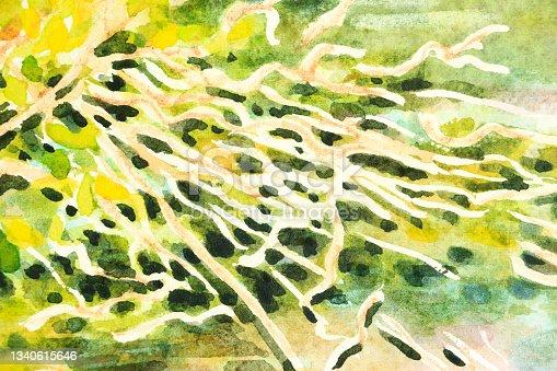 istock Detail of Illustration of Dusky Moorhen Nest Watercolour Painting 1340615646