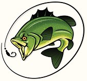 detailed illustration of a bass chasing a hook