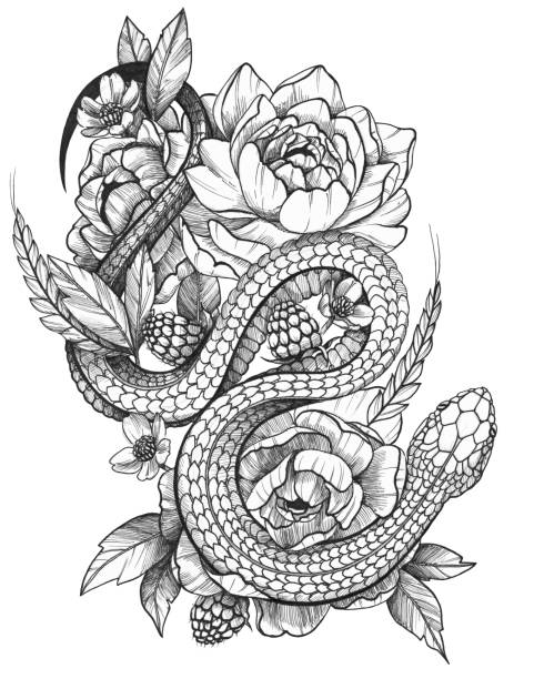 Detailed Black Ink Detailed Tattoo Snake in Floral Composition Black Ink Tattoo Funny Rick in Floral Composition. Contrast monochrome image. Peonies, raspbery and spikelet composition with a snake. snakes tattoos stock illustrations