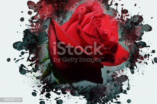 istock Digital watercolor painting of a red rose. A beautiful close-up 1332337141