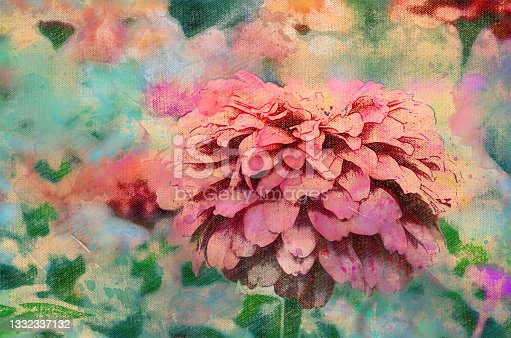istock Digital watercolor painting pink zinnia flower. Beautiful orname 1332337132