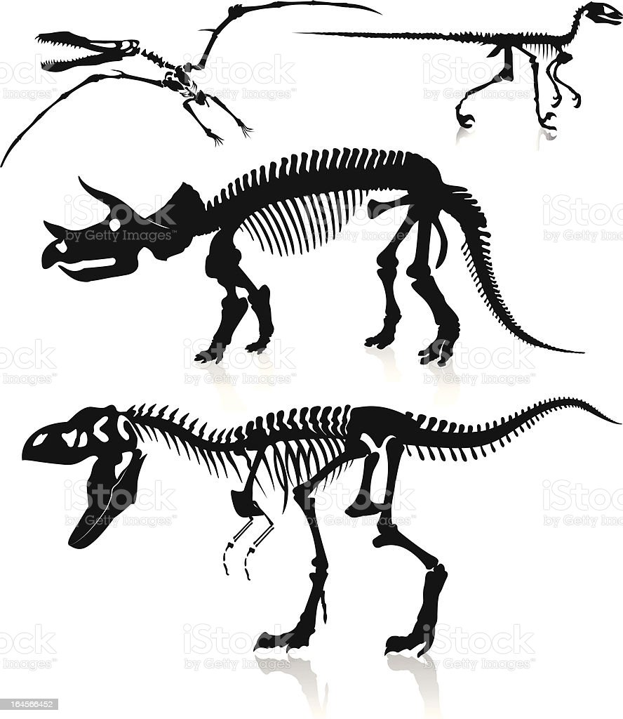 Dinosaurs and Fossils royalty-free stock vector art