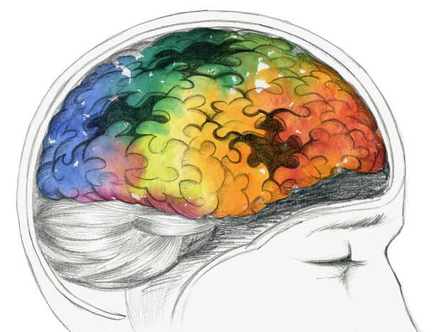 ilustrações de stock, clip art, desenhos animados e ícones de diseased human brain - alzheimer