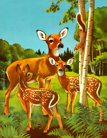 Doe and Two Fawn