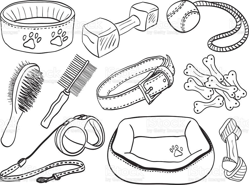 Dog accessories hand-drawn illustration royalty-free stock vector art