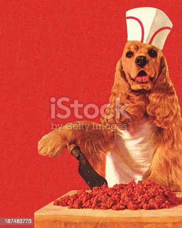 Dog Butcher Wearing Hat