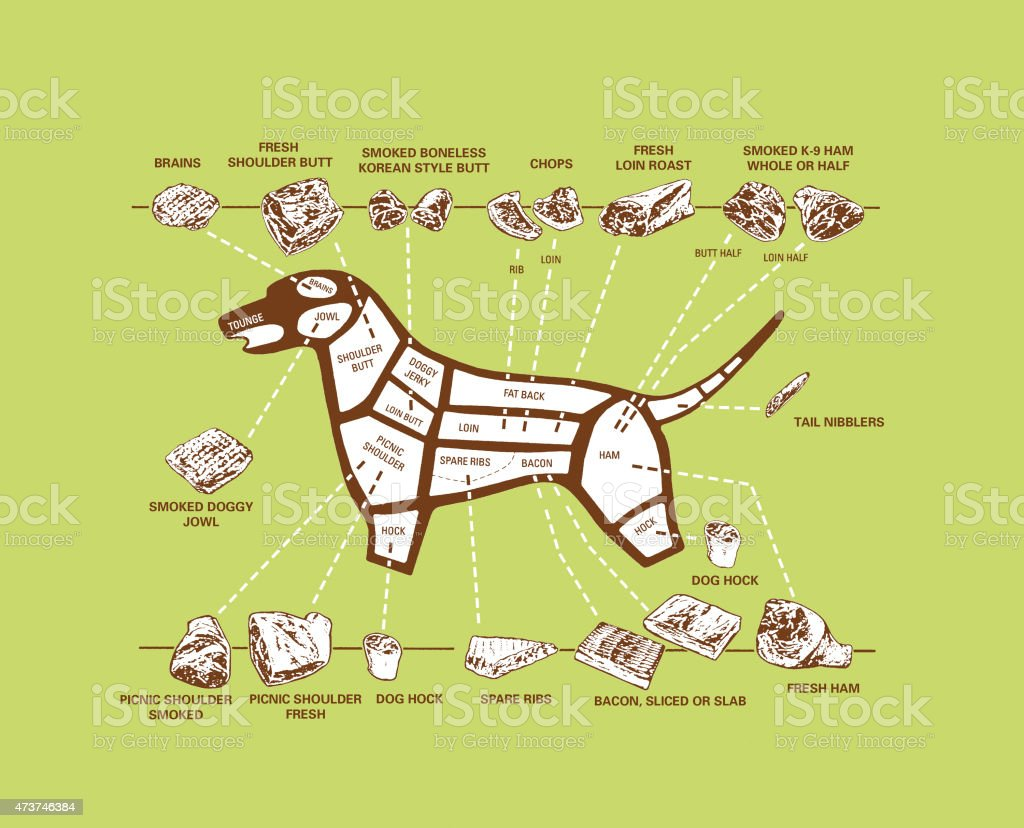 Pug Dog Brain System Diagram - Introduction To Electrical Wiring ...