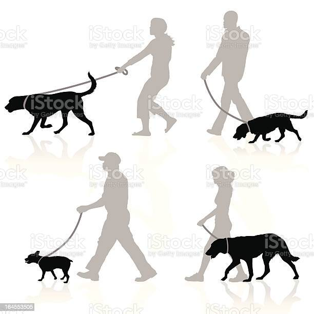 Dog walkers illustration id164553505?b=1&k=6&m=164553505&s=612x612&h=mxpanqbuwuyroh xwfuwwfx9rryewad8oke0mtzwdfk=