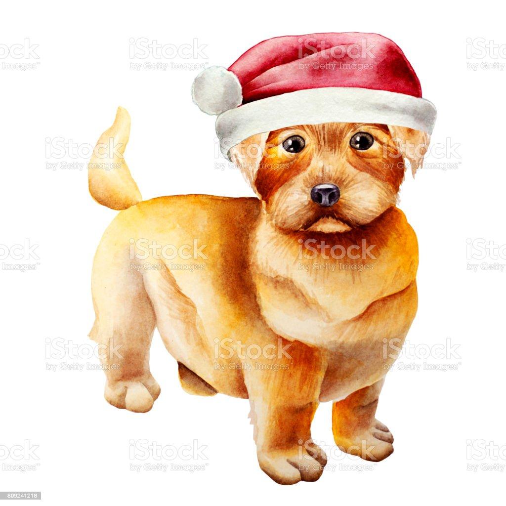 Dog watercolor image vector art illustration