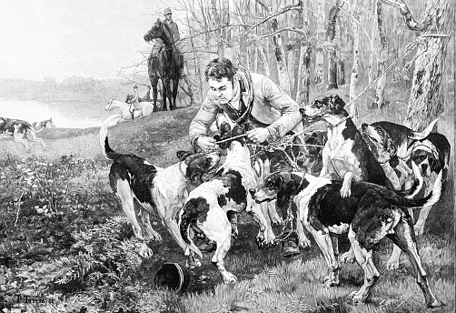 Dogs when hunting are decoupled