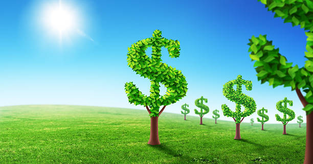 Dollar garden Trees with foliage in shape of dollar sign. money tree stock illustrations