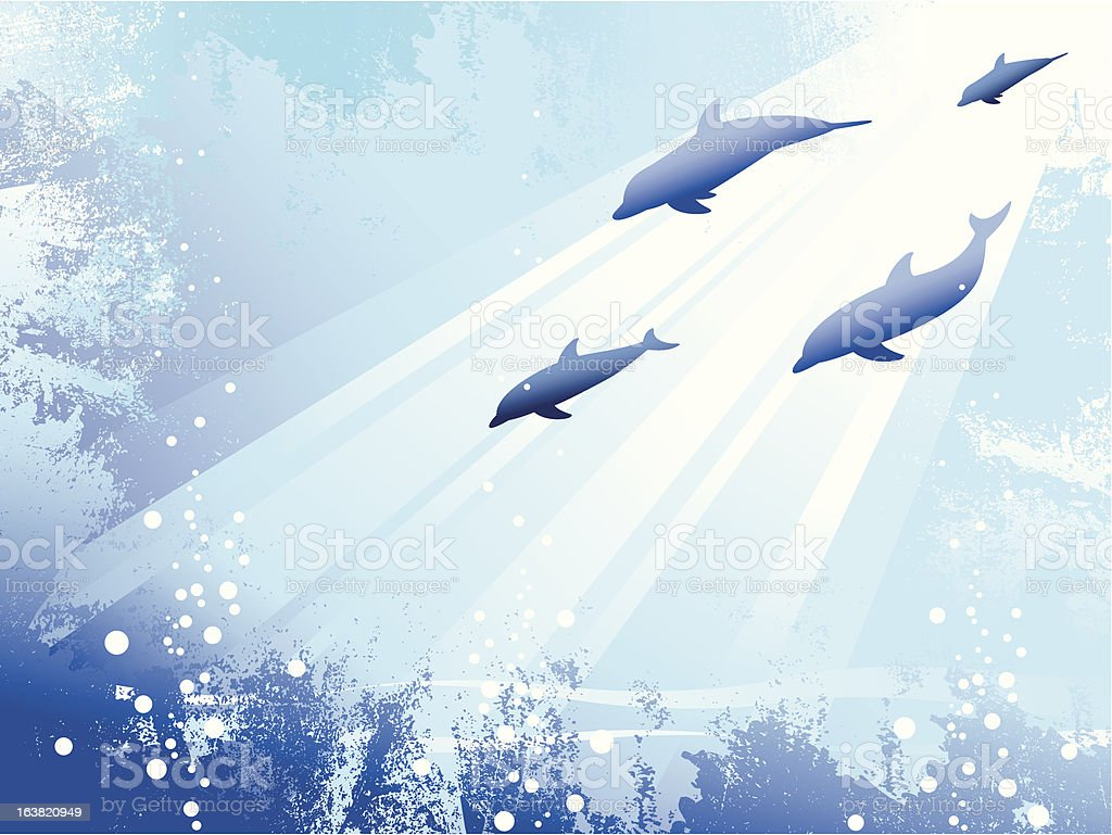 Dolphin Background royalty-free stock vector art