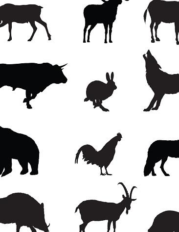 Domestic and Wild Animals Silhouette