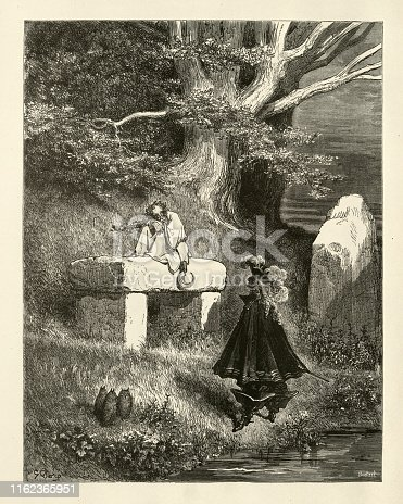 Vintage engraving of Donkeyskin (French: Peau d'Ane) is a French literary fairytale written in verse by Charles Perrault., Fairy Tales of Charles Perrault illustrated by Gustave Dore.