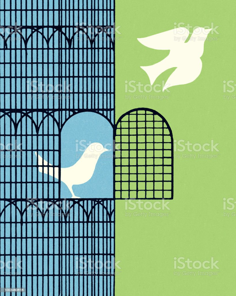 Dove Flying Out of a Bird Cage vector art illustration