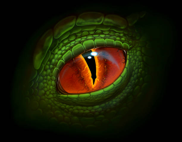 dragon eye - reptiles stock illustrations