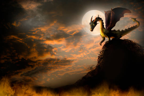 dragon on a rock. - dragon stock illustrations, clip art, cartoons, & icons