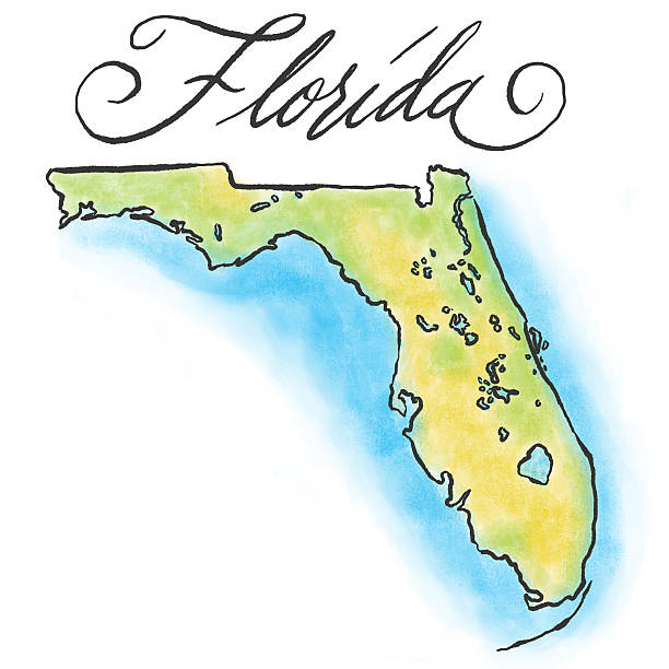 Drawing of the Florida map on white background An illustrated map of Florida. RETROROCKET stock illustrations