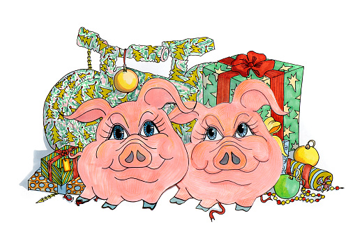 Drawing of two funny pigs on a background of gifts and surprises