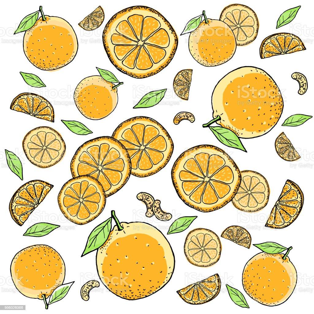 Ilustracion De Dibujo Fondo De Frutas Naranja Y Mas Banco De
