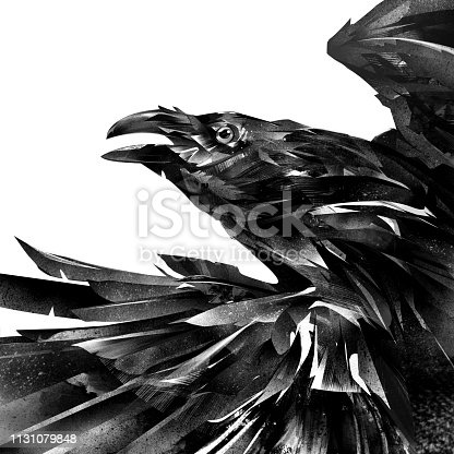 art designer portrait of a raven on a white background