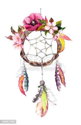 dream catcher feathers leaves flowers autumn watercolor