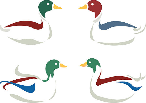 duck-design - ente wasservogel stock-grafiken, -clipart, -cartoons und -symbole