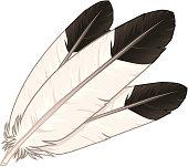 istock Eagle Feathers 165635563