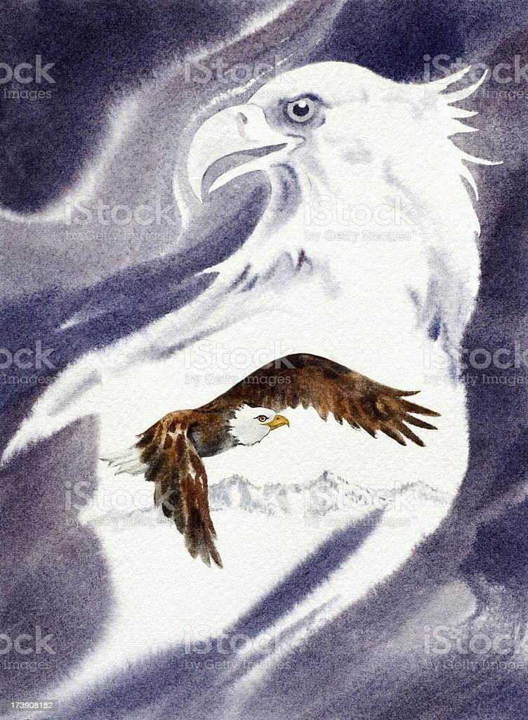 Eagles vector art illustration