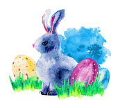 Easter bunny in grass with painted easter eggs. Hand drawn carto