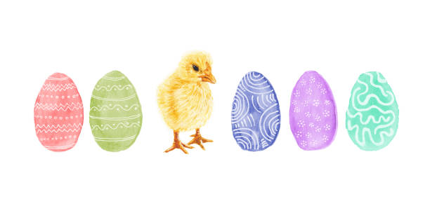 Easter Eggs and Baby Chicken - Original Watercolor Painting vector art illustration