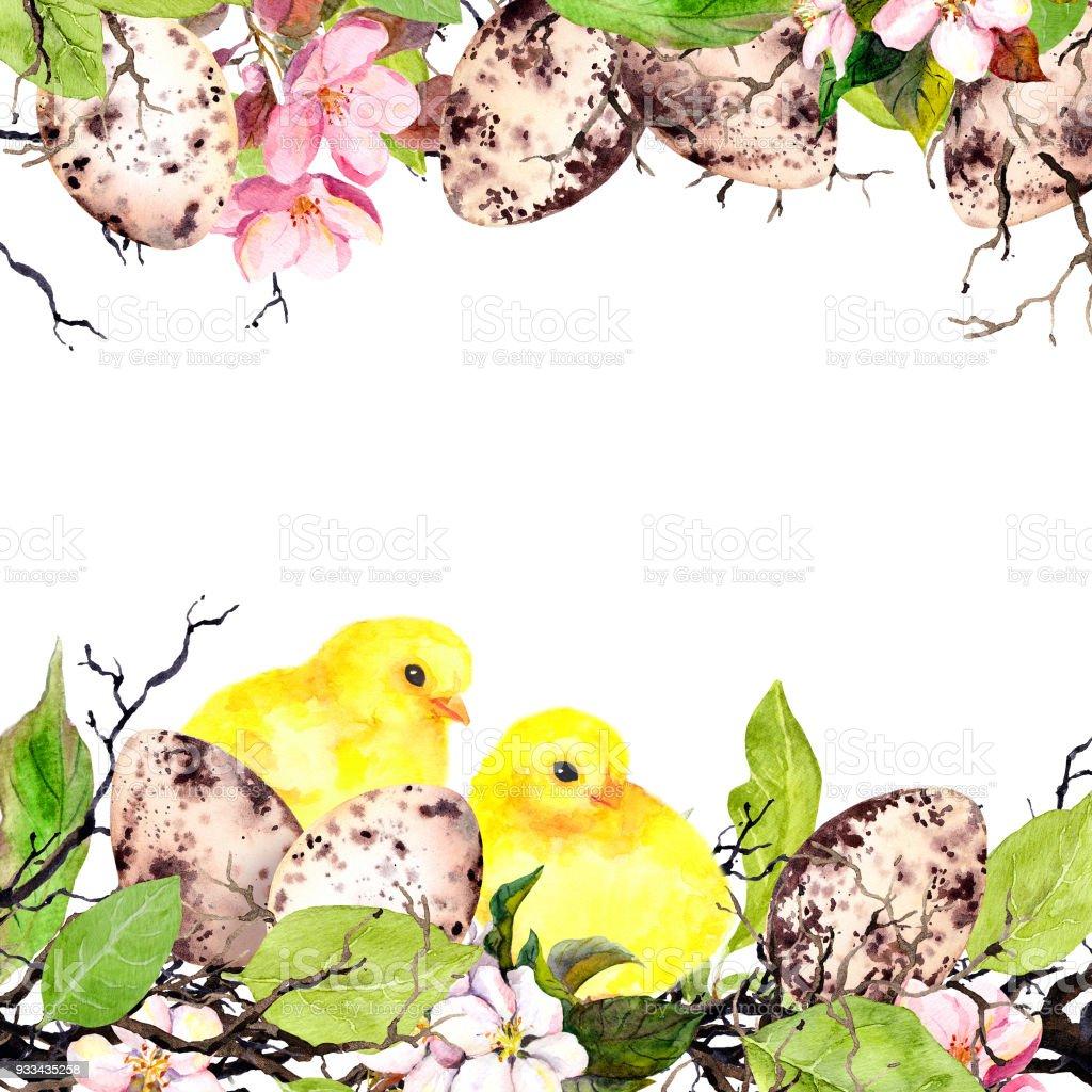 Paskalya Yumurtaları Civciv çim Ve Pembe çiçekler Suluboya Paskalya