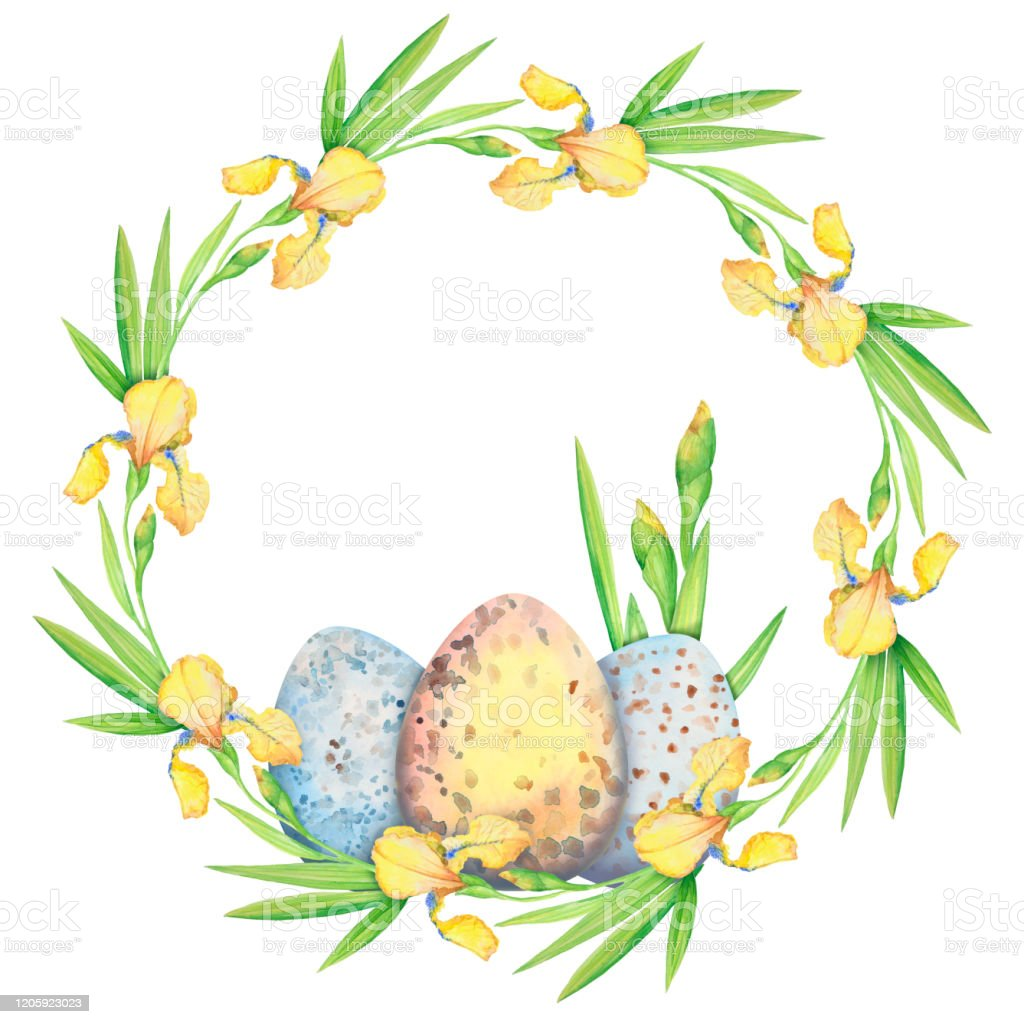 Easter Wreath With Yellow Flowers Irises And Eggs Watercolor