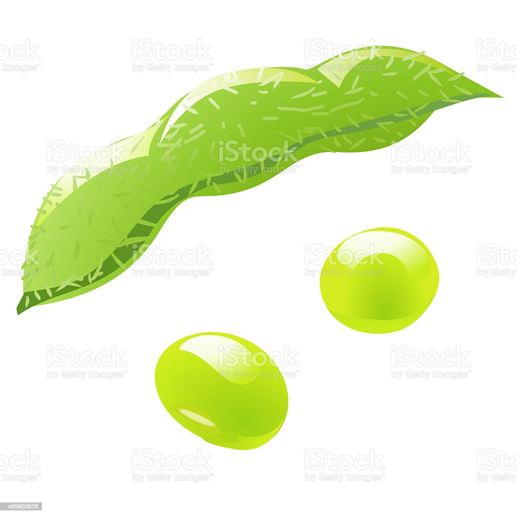 edamame green soybeans illustration vector art illustration